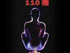 精巧魔术110招pdf