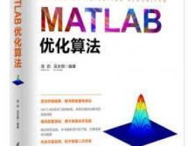 MATLAB优化算法pdf