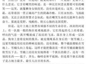 白牙pdf