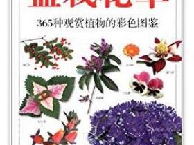 盆栽花草 365种观赏植物的彩色图鉴pdf