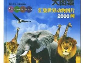 世界动物大图集 汇集世界动物图片2000例pdf