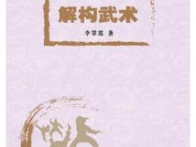 解构武术pdf