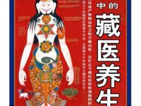 唐卡中的藏医养生pdf