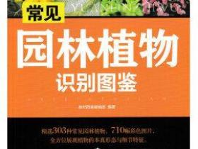 常见园林植物识别图鉴pdf