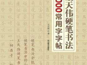 王天伟硬笔书法4000常用字字帖pdf