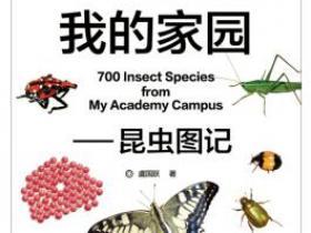 我的家园 昆虫图记pdf