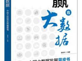 赢在大数据 中国大数据发展蓝皮书pdf