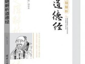 逻辑解析道德经pdf