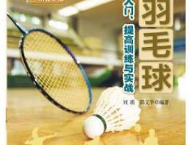 羽毛球入门 提高训练与实战pdf