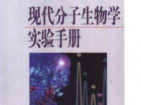 现代分子生物学实验手册pdf