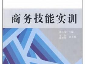 商务技能实训pdf