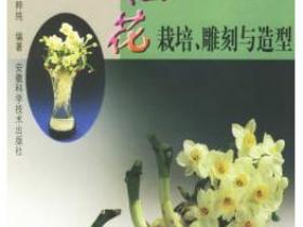 水仙花栽培 雕刻与造型pdf