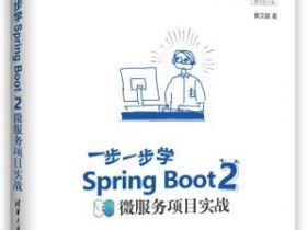 一步一步学Spring Boot 2微服务项目实战pdf