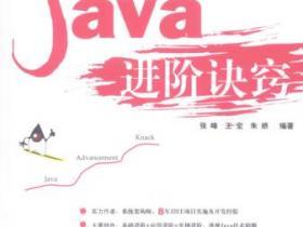 Java进阶诀窍pdf