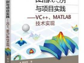 图像识别与项目实践 VC++ MATLAB技术实现pdf