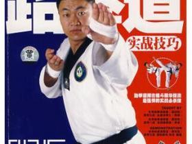 跆拳道实战技巧pdf