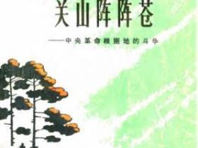 关山阵阵苍 中央革命根据地的斗争 中pdf