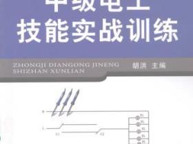 中级电工技能实战训练pdf