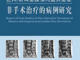 巨大 游离型腰椎间盘突出症非手术治疗的病例研究pdf