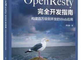 OpenResty完全开发指南 构建百万级别并发的Web应用pdf