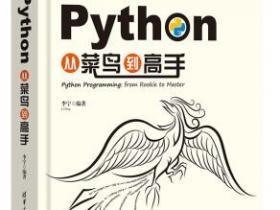Python从菜鸟到高手pdf