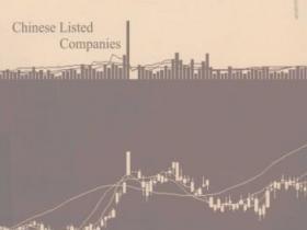 中国上市公司 盈余信息的可靠性及其度量pdf