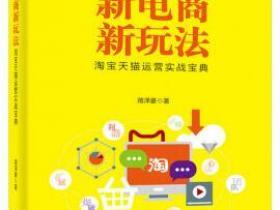 新电商新玩法 淘宝天猫运营实战宝典pdf